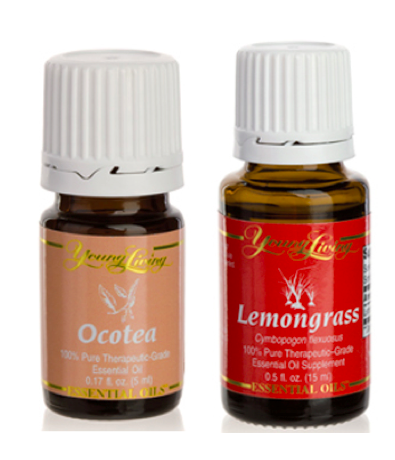 Ocotea and Lemongrass Essential Oils